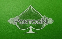 Pontoon Pro Blackjack